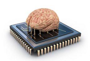 ایلان ماسک در مغز انسان تراشه می گذارد