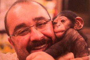 ببینید | جنجال بر سر شامپانزه معروف باغ وحش ارم