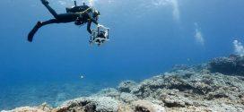 با فناوریهایی آشنا شوید که از بزرگترین رازهای اقیانوسها رمزگشایی میکنند /اسرار زیر آبی